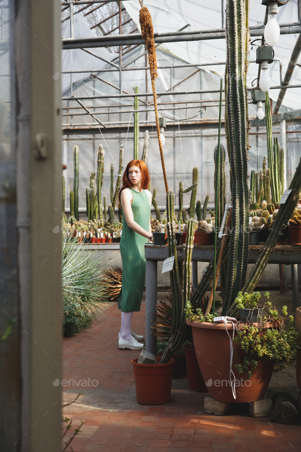 Young thoughtful woman in dress standing in a greenhouse - Stock Photo - Images