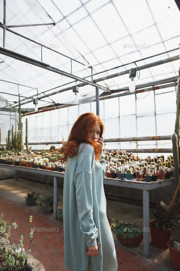 Young girl standing in a glass house full of cacti - Stock Photo - Images