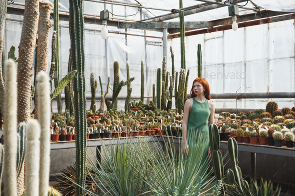 Redheaded girl standing in a glass house full of cacti - Stock Photo - Images
