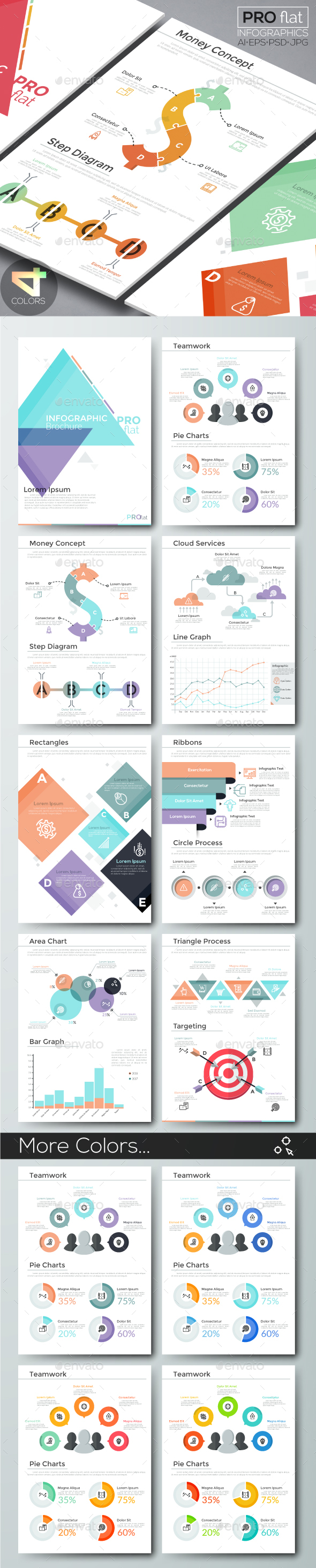 Pro Flat Infographic Brochure 10 (4 Versions) - Infographics