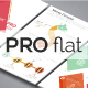 Pro Flat Infographic Brochure 10 (4 Versions) - GraphicRiver Item for Sale