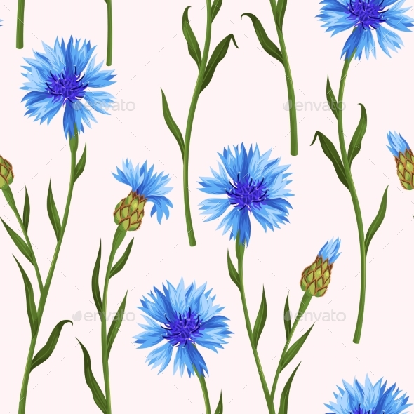 Seamless Pattern with Colorful Cornflowers - Flowers & Plants Nature
