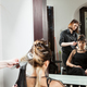 Woman at hairdresser salon getting a new hairstyle - PhotoDune Item for Sale