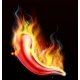 Red Hot Chilli Pepper on Fire