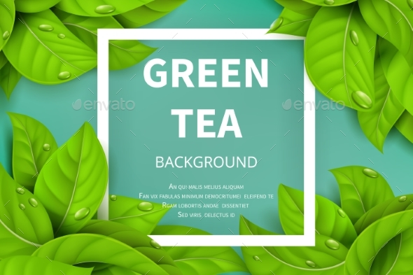 Green Tea Leaves Vector Nature Background - Backgrounds Decorative