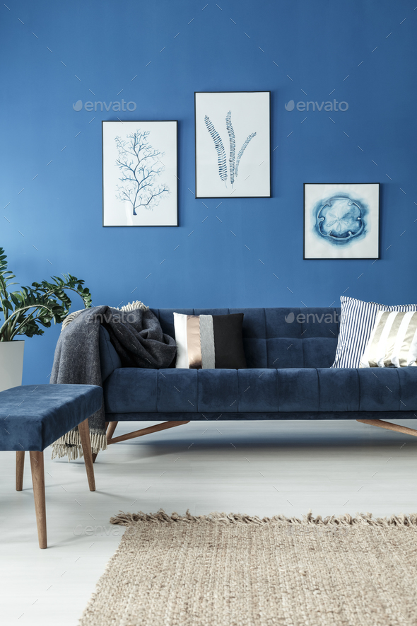 Sofa in blue room - Stock Photo - Images