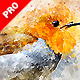 Perfectum 2 - Watercolor Artist Photoshop Action - GraphicRiver Item for Sale