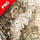 Piratum - Map Art Photoshop Action - GraphicRiver Item for Sale