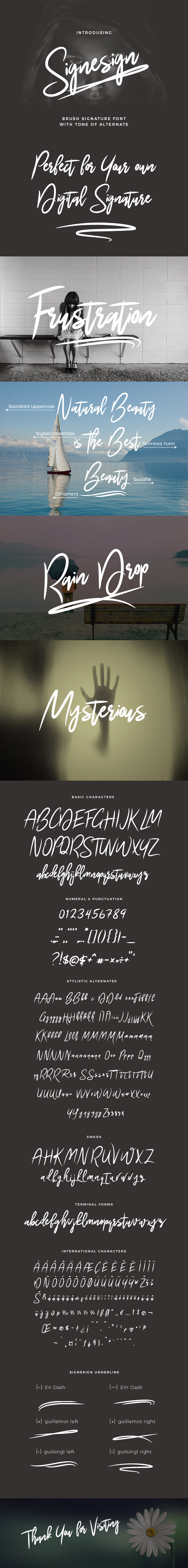 Signesign | Signature Brush Font - Calligraphy Script
