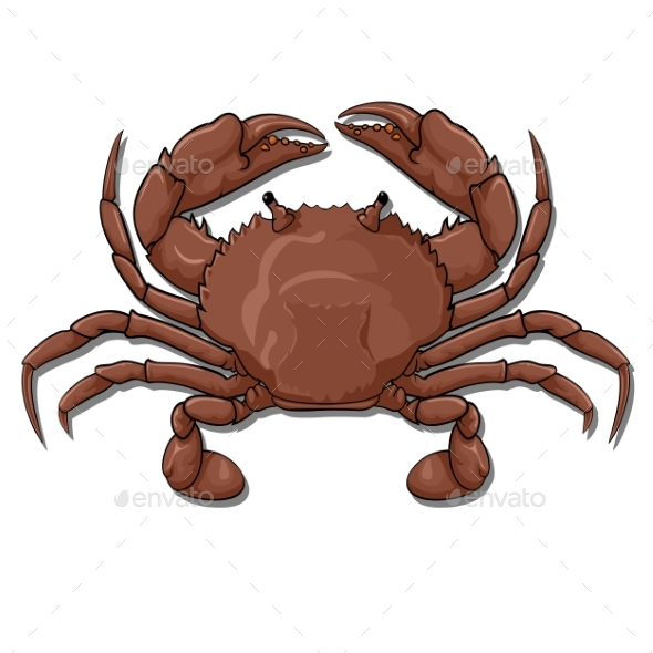 Crab Top View - Animals Characters