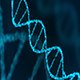 Dna Human - VideoHive Item for Sale