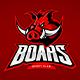 Boar Mascot - GraphicRiver Item for Sale