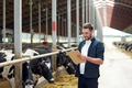 farmer with clipboard and cows in cowshed on farm - PhotoDune Item for Sale