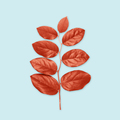 red leaves on blue background - PhotoDune Item for Sale