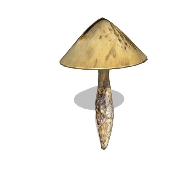Mushroom - 00016 - 3DOcean Item for Sale