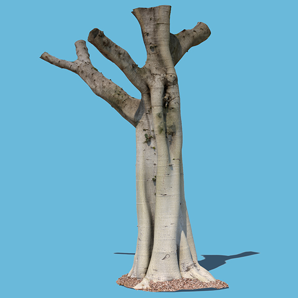 Woody Harrelson (3D Scan) - 3DOcean Item for Sale