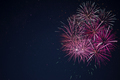 Amazing maroon red pink celebration fireworks - PhotoDune Item for Sale