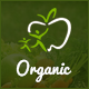 Organic Store -  Organic Food, Agriculture, Farm Services and Beauty Products HTML Template Nulled