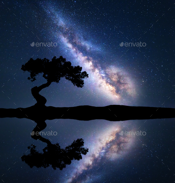 Milky Way with alone crooked tree on the hill - Stock Photo - Images
