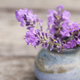 Fragrant Lavender  - PhotoDune Item for Sale