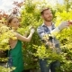 Cheerful People Working with Plants - VideoHive Item for Sale