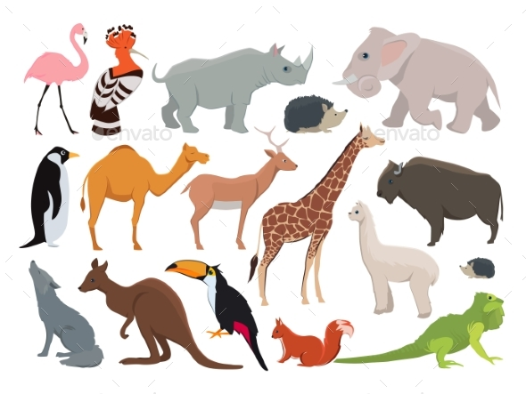 Wild Animals in Cartoon Style. Vector - Animals Characters