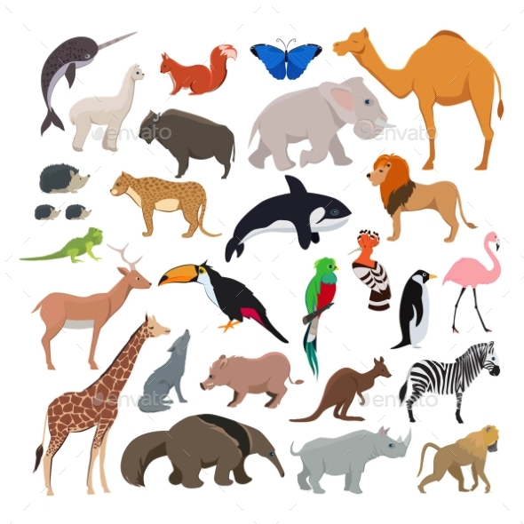 Big Vector Set with Wild Animals Isolate - Animals Characters
