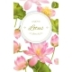 Lotus Flower Banner - GraphicRiver Item for Sale