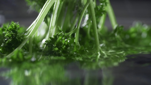 VideoHive Fresh Parsley in the Water Greens Food Vitamins in Vegetables 20209826