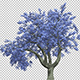 Flowering Blue Tree - VideoHive Item for Sale