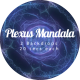 Plexus Mandala 1 - VideoHive Item for Sale