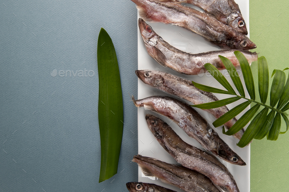 Raw fresh-frozen capelin close-up on a light blue-green backgrou - Stock Photo - Images