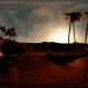 VR 360 Degree Panorama of Palms in Desert at Sunset - VideoHive Item for Sale