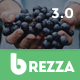 Brezza - Fruit Store Multipurpose WooCommerce WordPress Theme Nulled