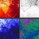 Network Morph Texture BG - Pack