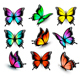 Colorful Butterflies Set. Vector. - GraphicRiver Item for Sale