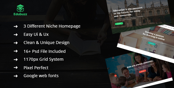 Download Edubuzz - Educational PSD Template nulled version