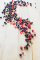 Wild forest berries - PhotoDune Item for Sale