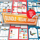Bundle Resume Infographics - GraphicRiver Item for Sale