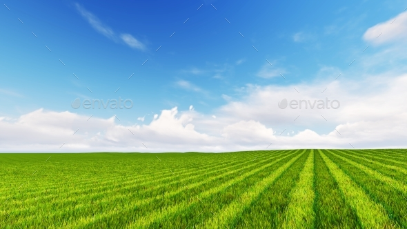 Beatiful Green Field with Cloudy Sky 3D Render