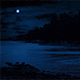 Beach Cove In Moonlight - VideoHive Item for Sale