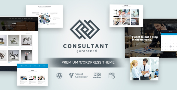 Consultant - Responsive OnePage Business WordPress Theme