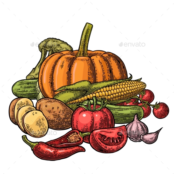 Poster with Set of Vegetables - Food Objects