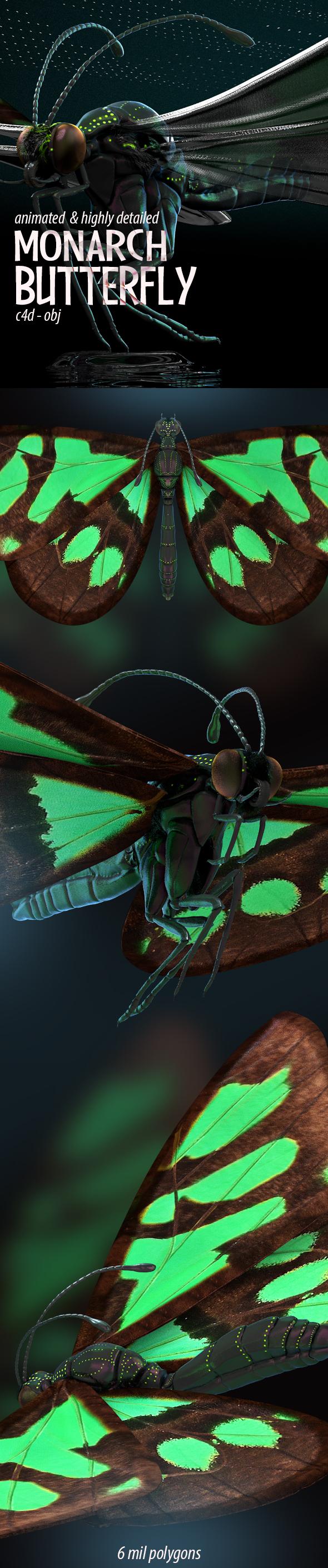 3DOcean Butterfly Flapping Wings 3D Model 20230354