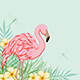 Pink Flamingo and Flowers - GraphicRiver Item for Sale