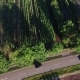 Aerial View. Cars Driving on Country Road - VideoHive Item for Sale