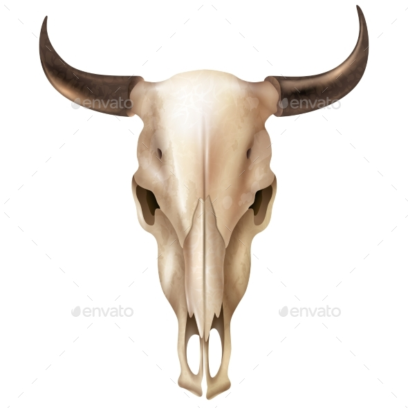 GraphicRiver Realistic Cow Skull 20232041