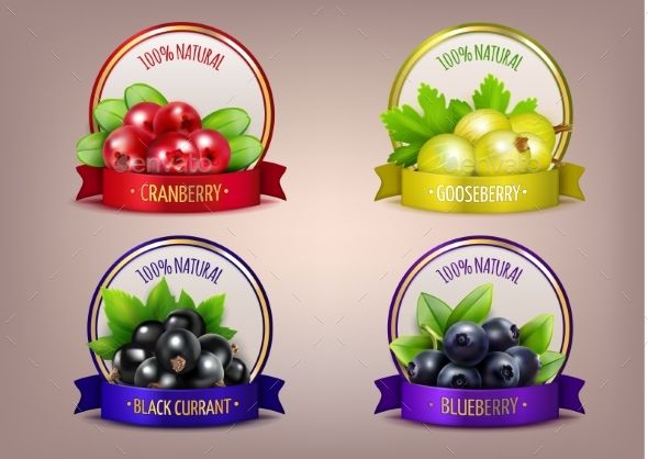 GraphicRiver Berry Labels Realistic Eco Collection 20232066