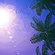 Palms Loop Background Nulled