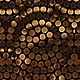 Gold Coins Kaleidoscope Nulled
